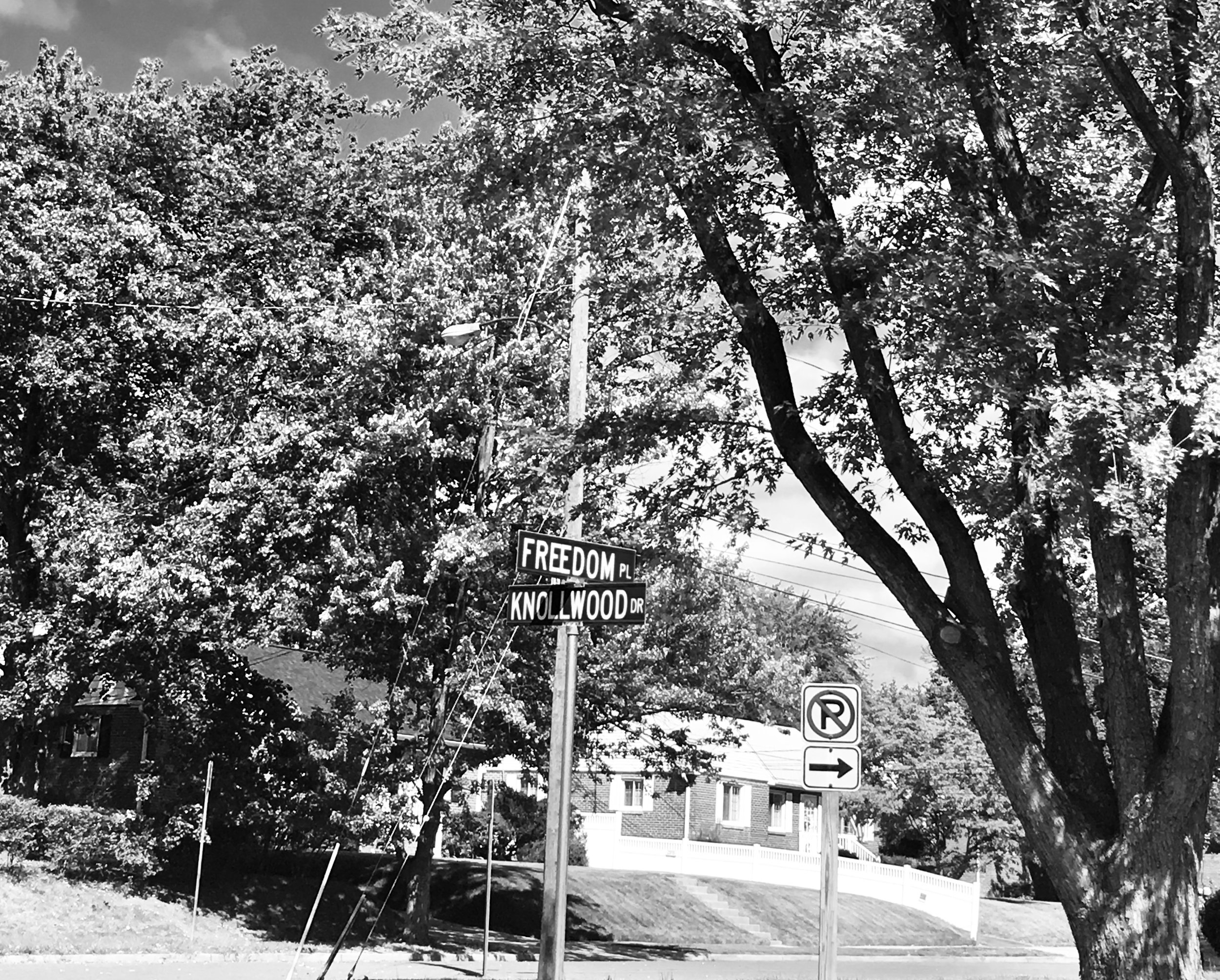 """Photo credit: Claudia Rojas  [Image description: The intersection of a street sign.One sign says """"Freedom"""" and one says """"Knollwood."""" Trees slightly cover a house in the background.]"""
