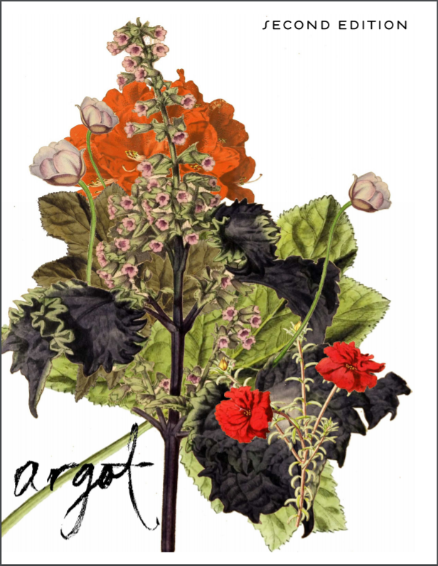 Hargot cover, Argot's print edition no.2. Artwork by: Mills Brown  [Image description: wildflowers against a large leaf and a blank background]