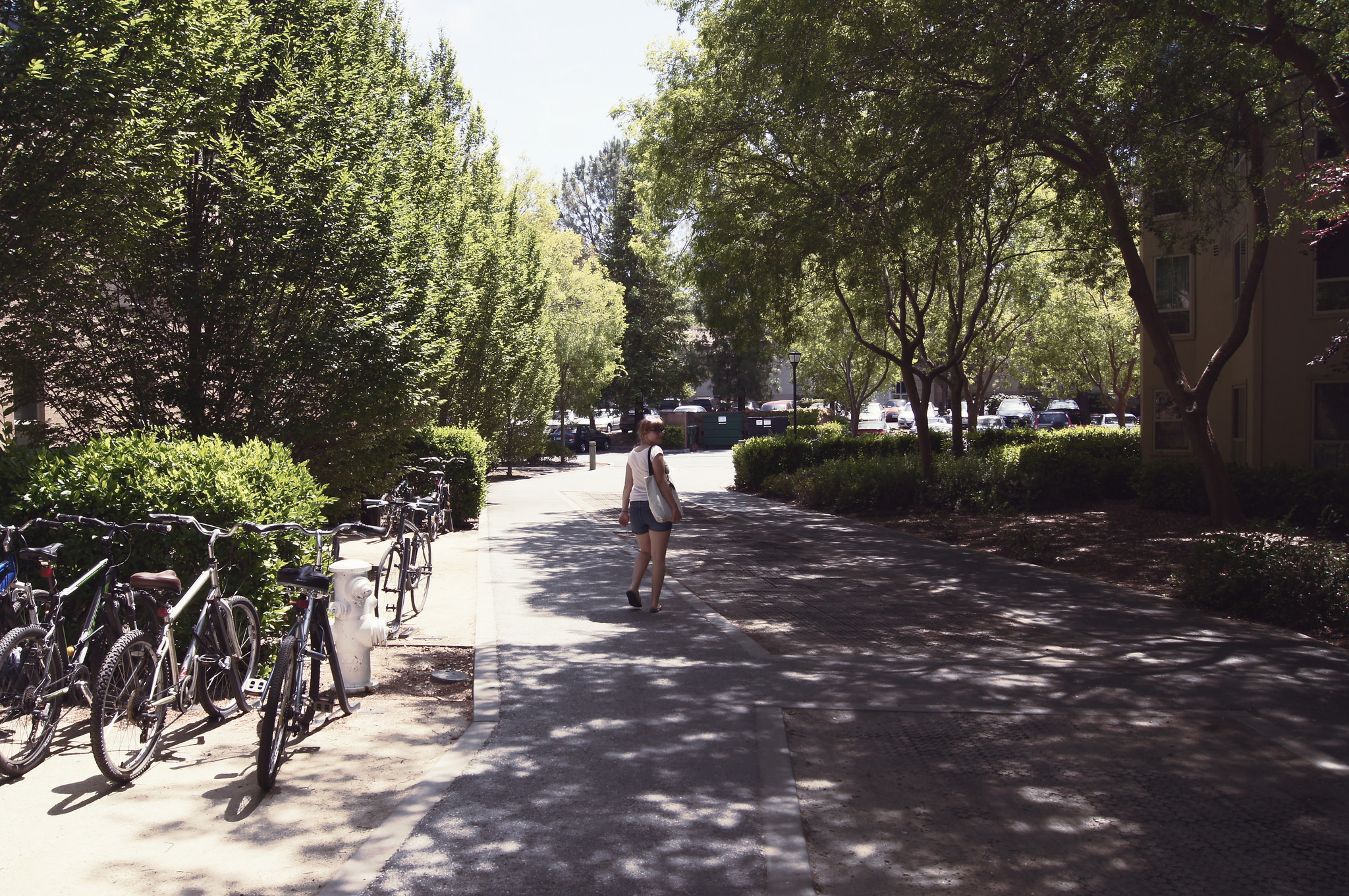 Soph Bonde / Argot Publications Inc    [Photo description: A distant view of a woman in shorts and a t-shirt walking away down a sun-dappled, tree-lined alley..]