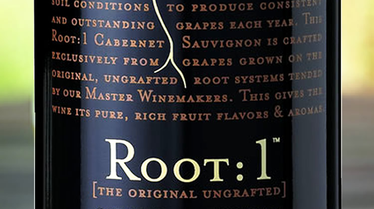 vinho_tinto_chile_root1_wine_marketing.jpg