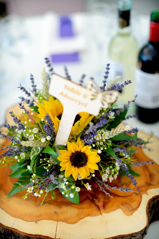 Hedingham-Castle-essex-wedding-photography-167.jpg