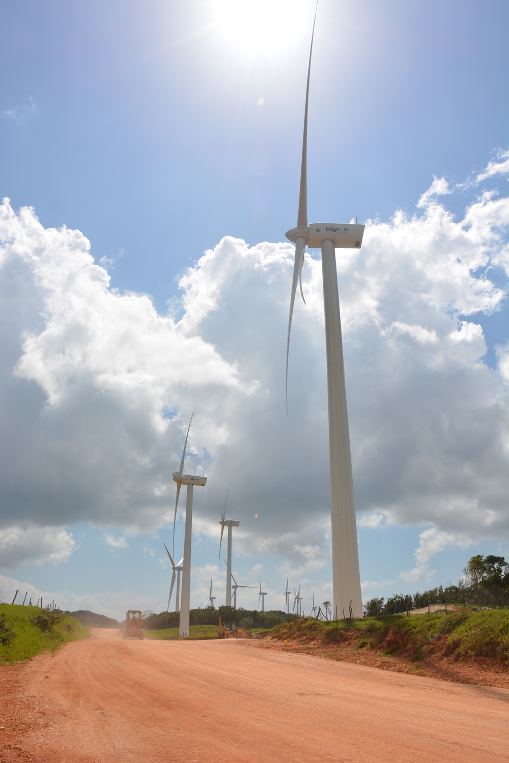 Photo courtesy of Wigton Windfarm, Jamaica
