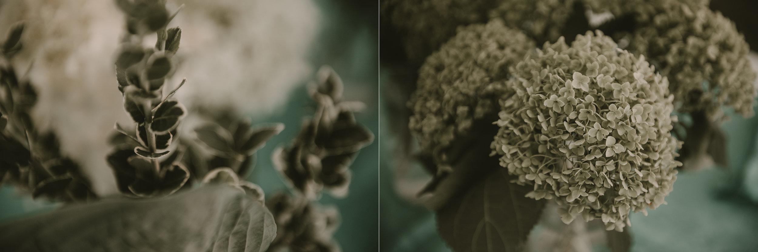 j&h_flowers2.jpg