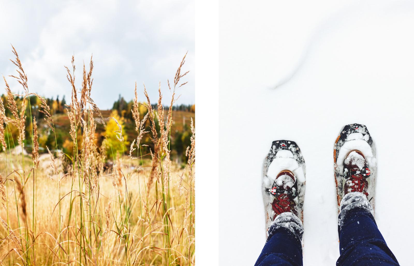 Krista_Karki_Portfolio_Suomu_Lapland-03.jpg
