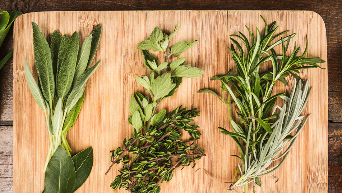 Herbs To Avoid During Pregnancy