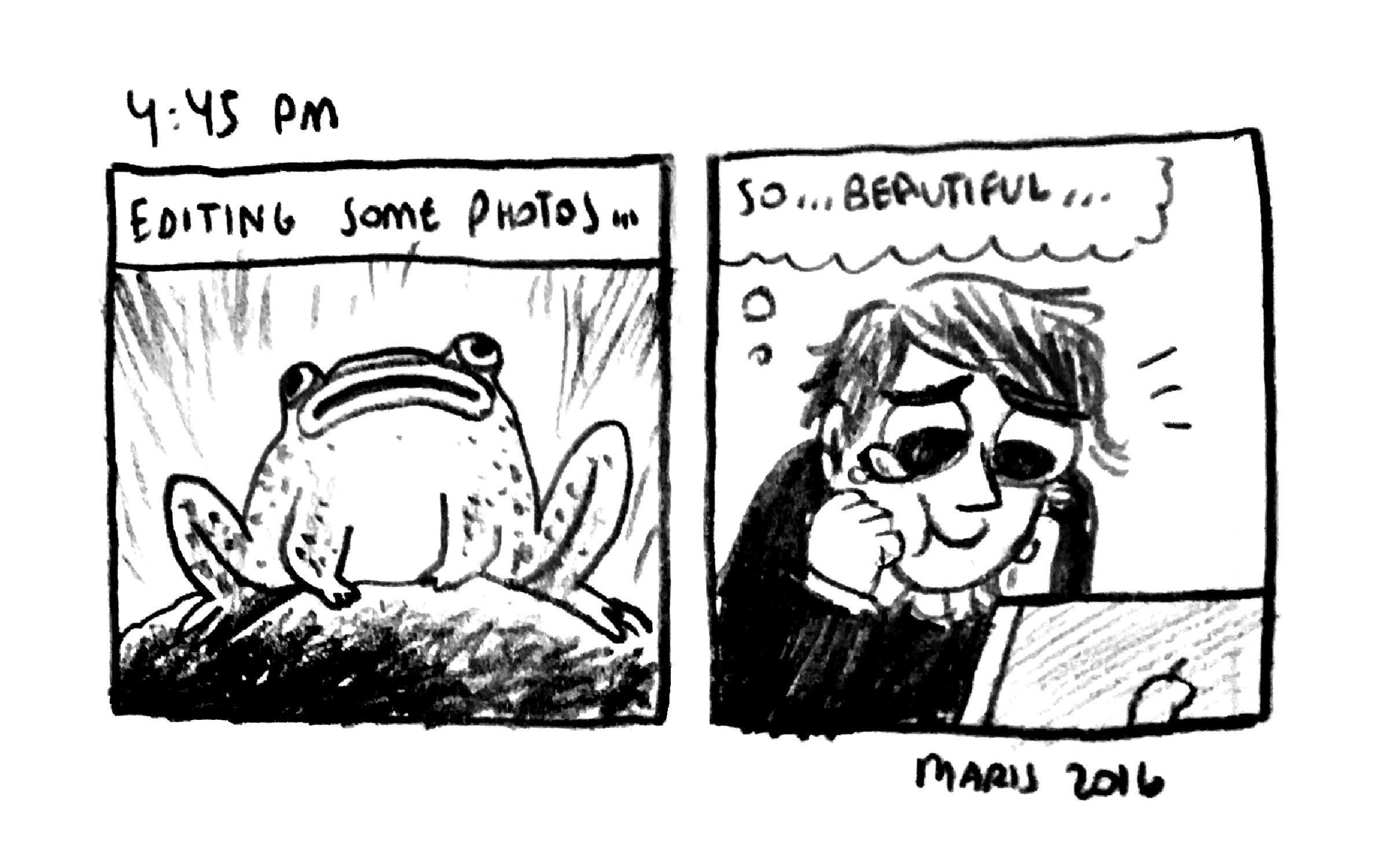 12_mw_2016_hourlies.jpg