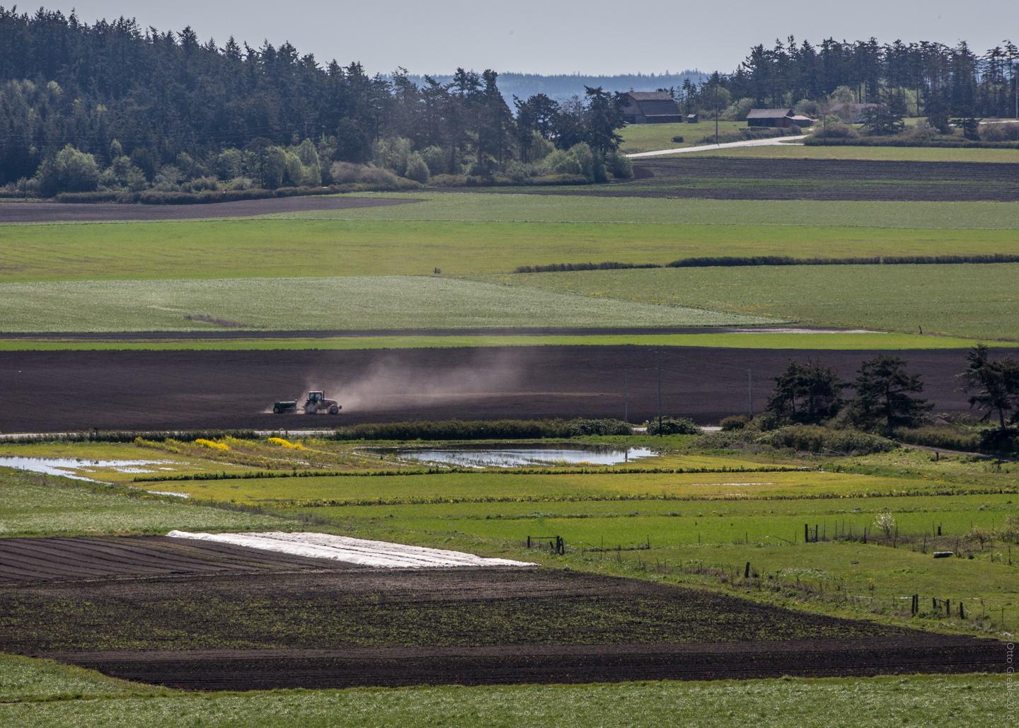 Farming Ebey's Prarie, Whidbey Island.