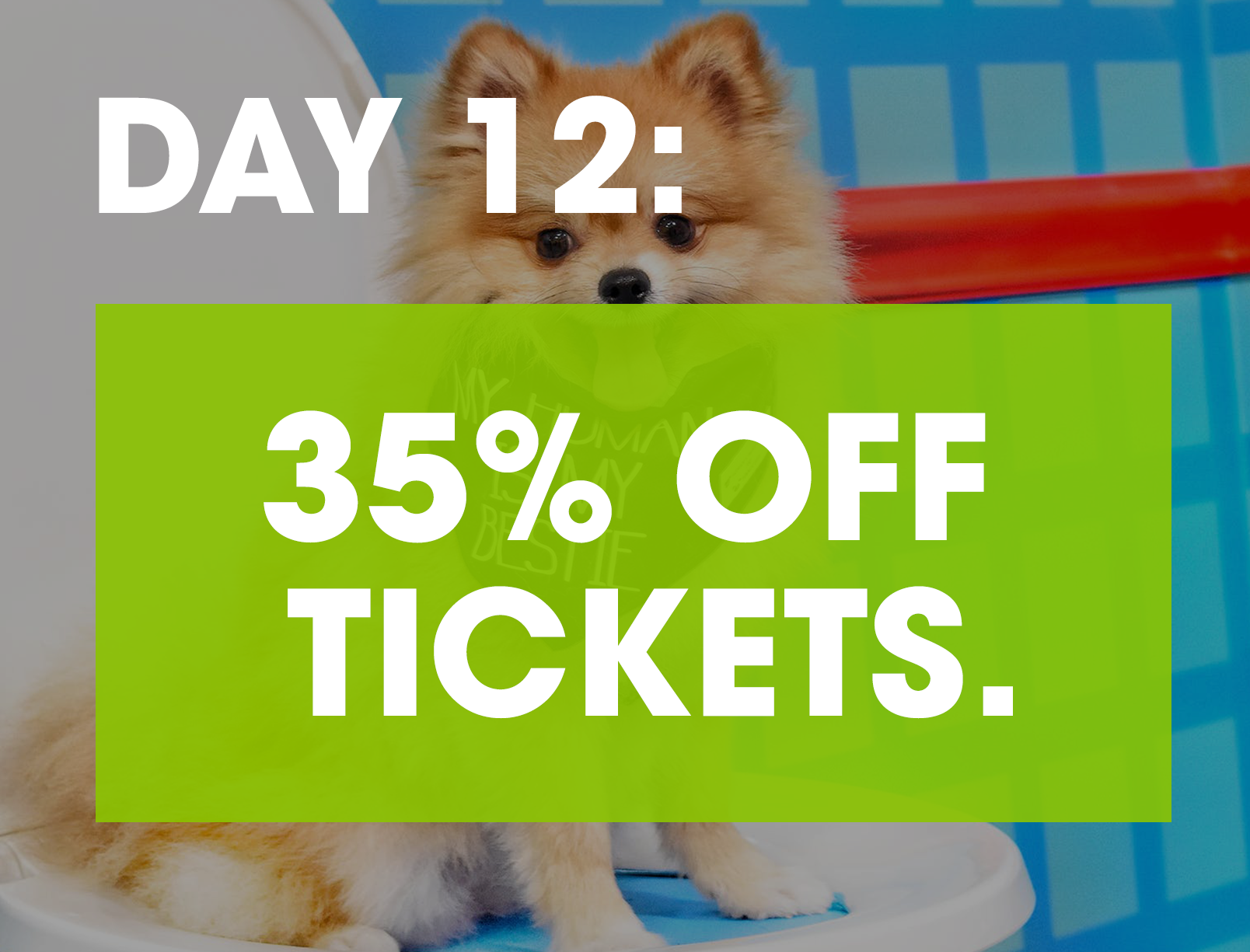 HUMAN'S BEST FRIEND - There's nothing ruff about this deal: get 35% off tickets to the Instagrammable dog pop-up sensation Human's Best Friend. Bring your pup and frolic through rooms designed to get your tails wagging.GET TICKETS >>