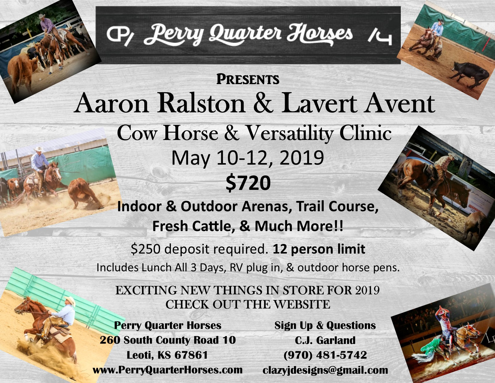 cow horse clinic flyer3.jpg