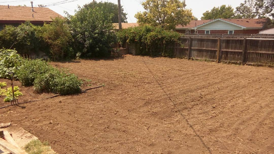raked and flattened