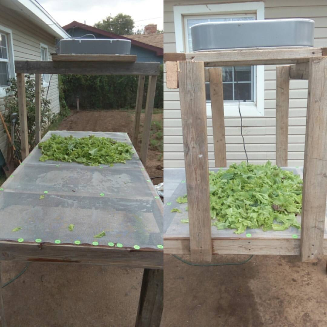 Washing and Drying Table