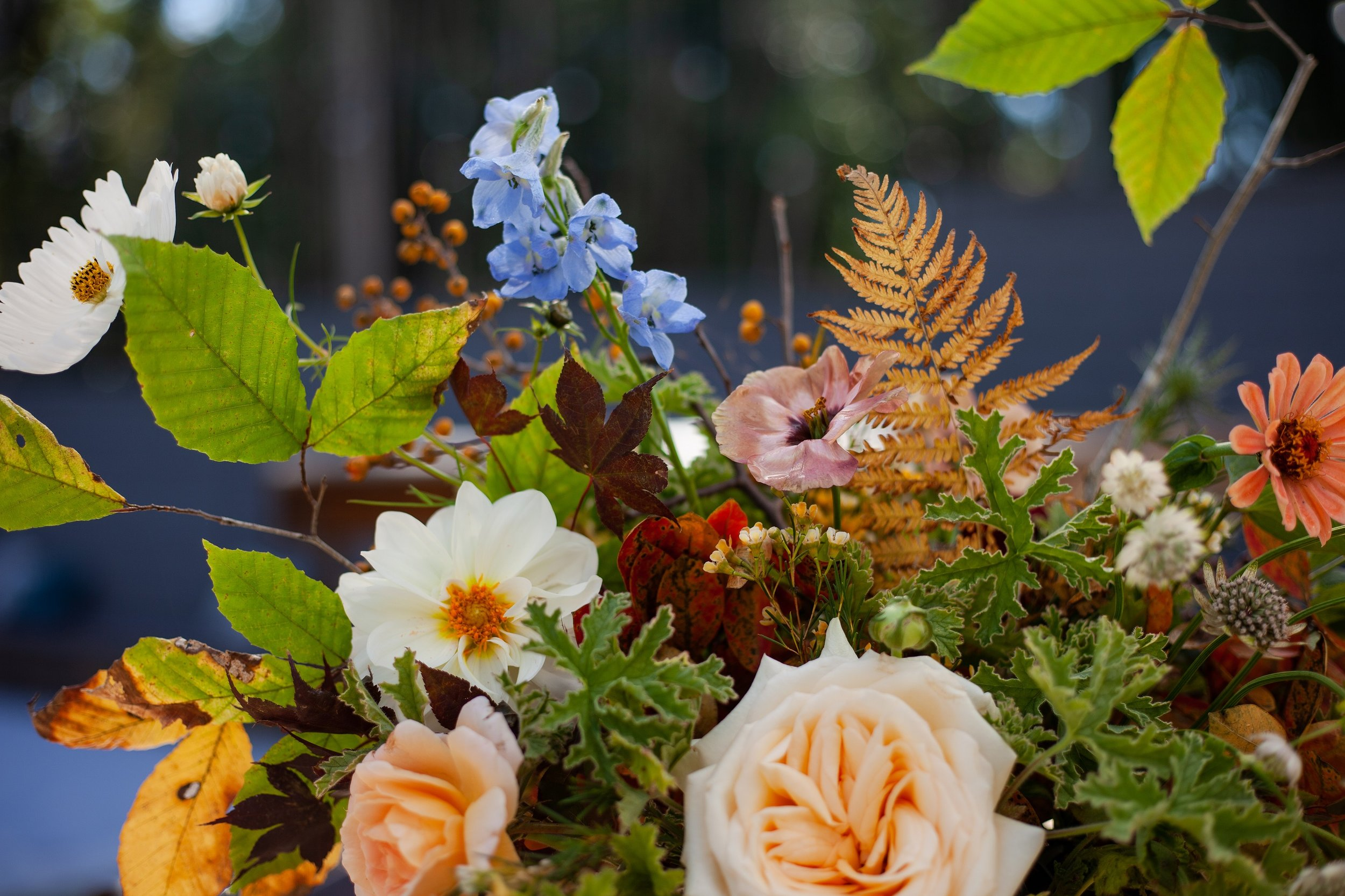 Laurel Creek Floral -65_smaller.jpg