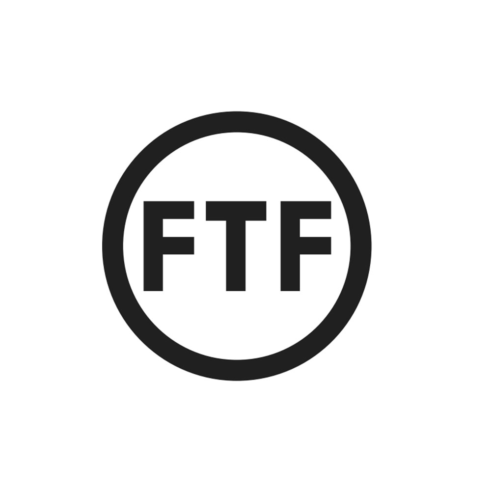 fashion_to_figure_logo.jpg