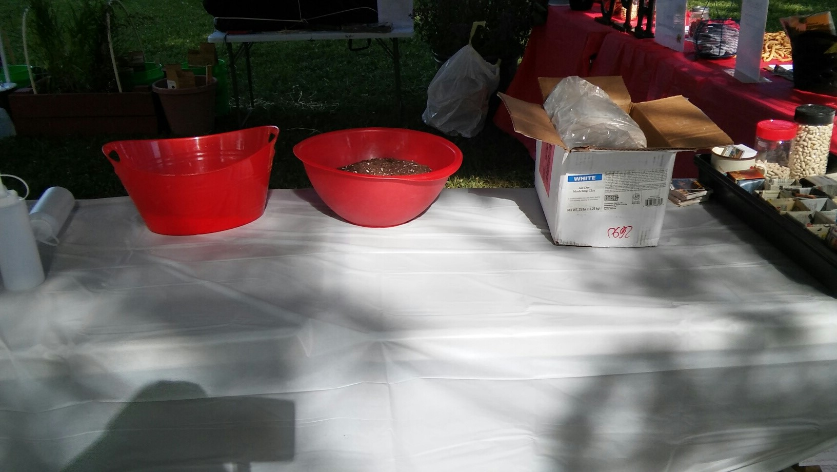 Setting up the seed tape and seed ball demonstration table at The Westgate Summer Jam 2016 - #2.jpg