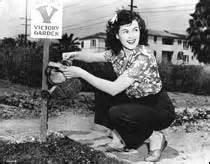 woman in her victory garden.jpg