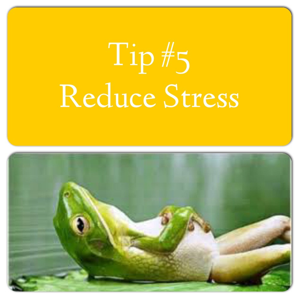 Reduce Stress. Stress has a detrimental effect on the gut. It changes gastric secretion, gut motility, mucosal permeability (increasing leaky gut) and changes in the composition of the microbiota. Stress related conditions is the number 1 reason people come to see me. Not that they know that at the time. Stress from overworking, over exercising, anxiousness, doing too much, not resting, eating inflammatory foods.... The list goes on and it all comes back to stress. Read my blog here on how to 'de-stress' http://functionalnutritionist.net/2016/03/09/7-everyday-tips-to-de-stressstress-less/ or link in bio.