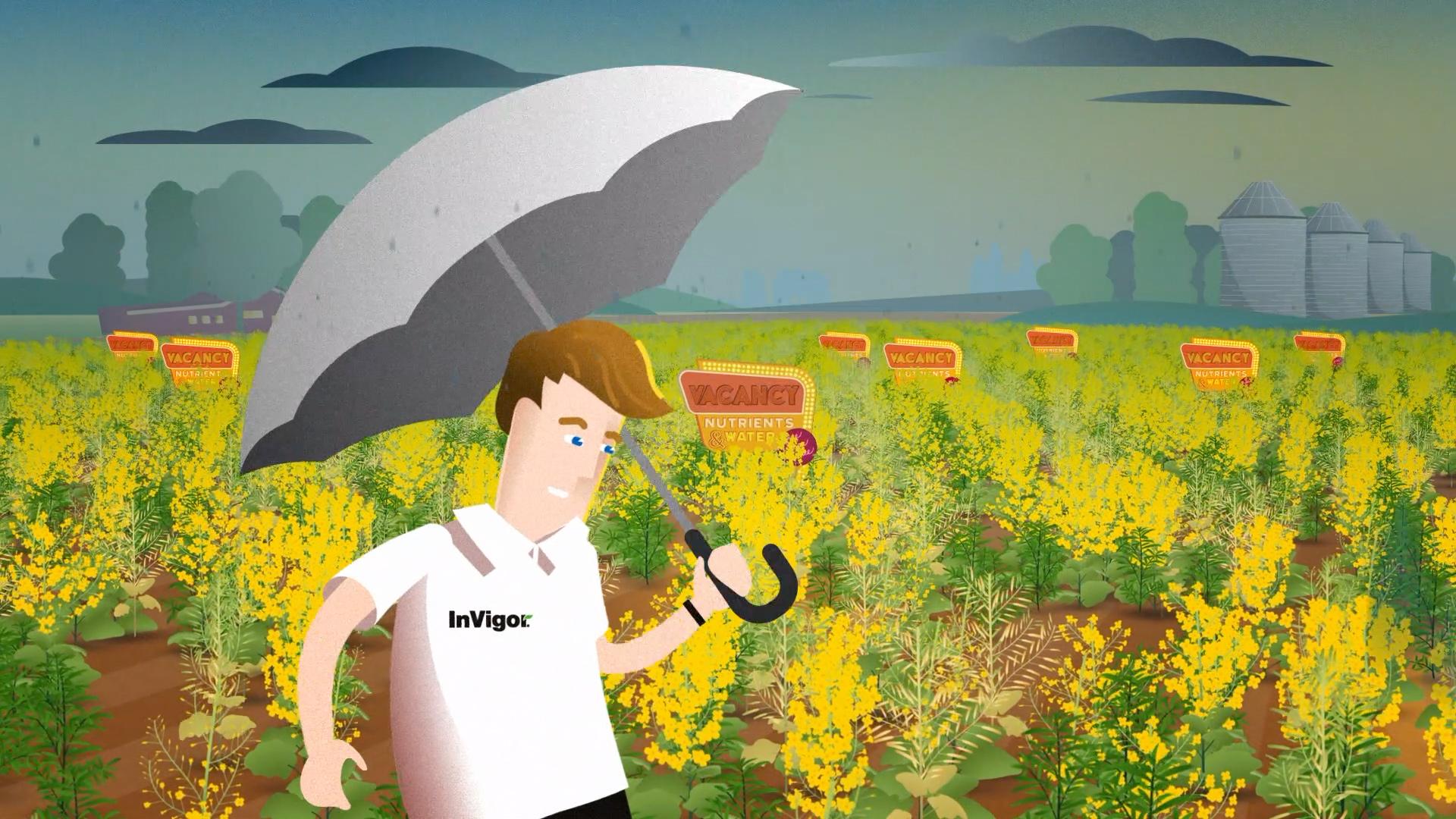 Bayer-InVigor-06.jpg