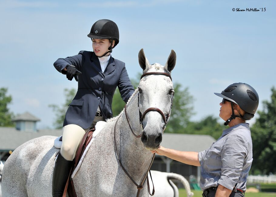 LESSONS - No horse needed.