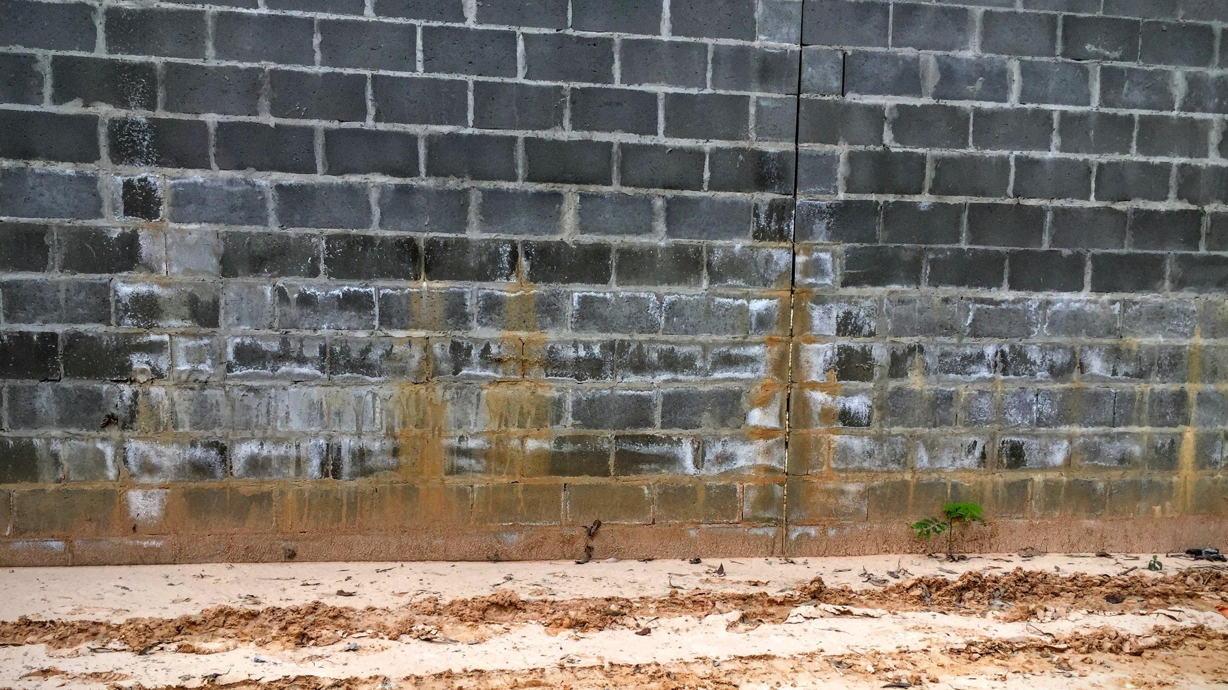 Eflorescência em alvenaria de concreto