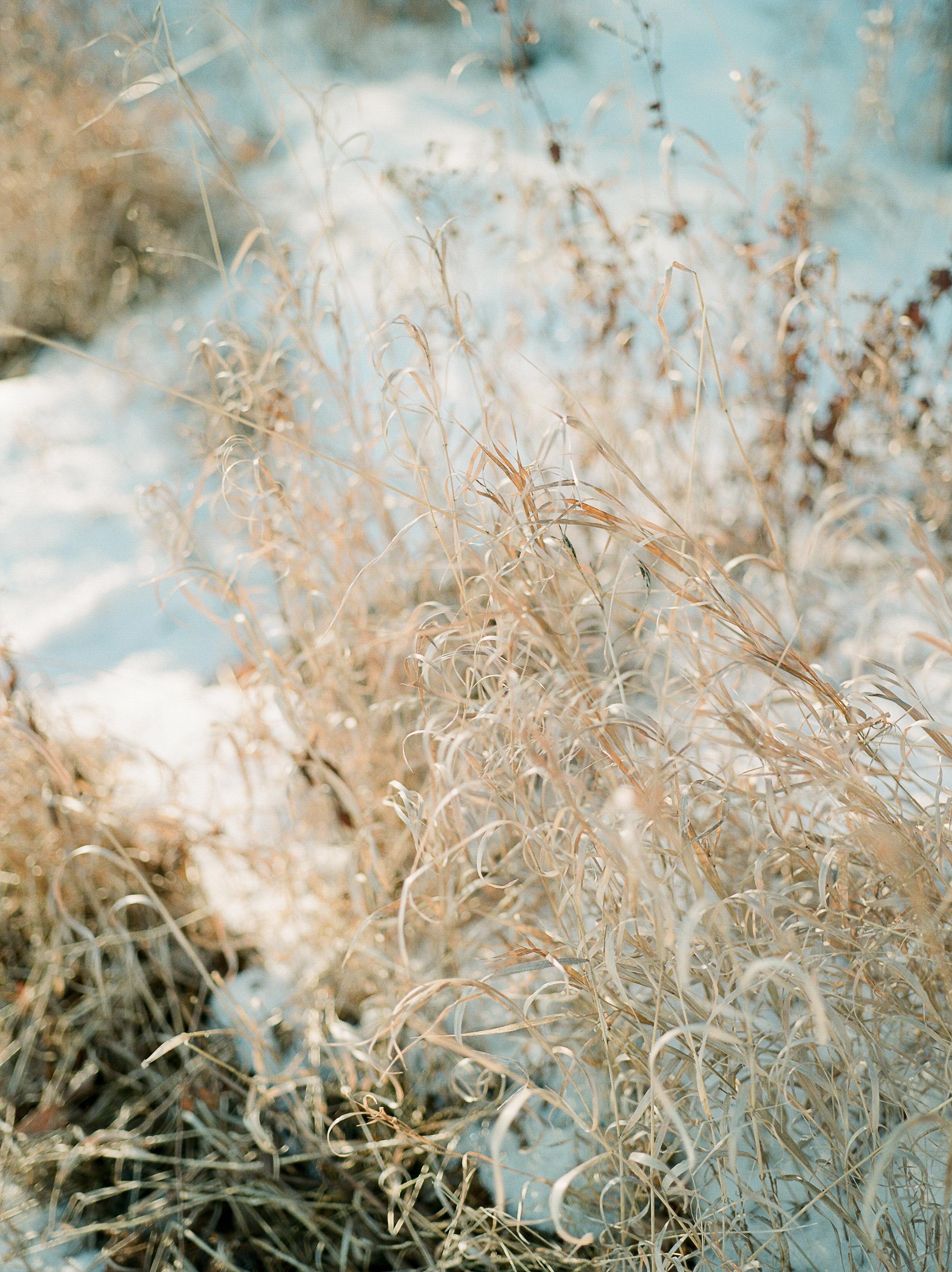 WinterStyledShoot-KMP002.JPG