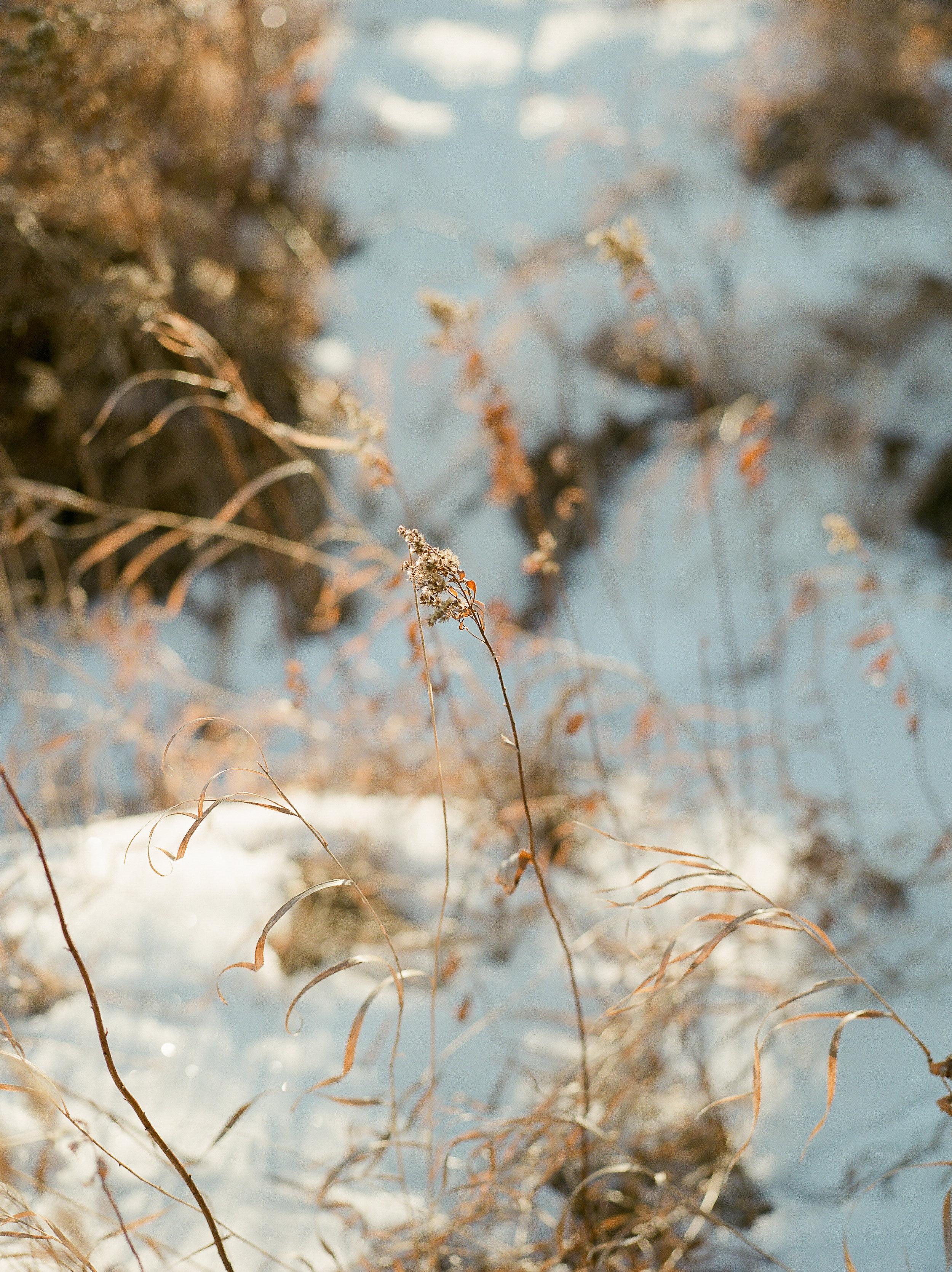 WinterStyledShoot-KMP006.JPG