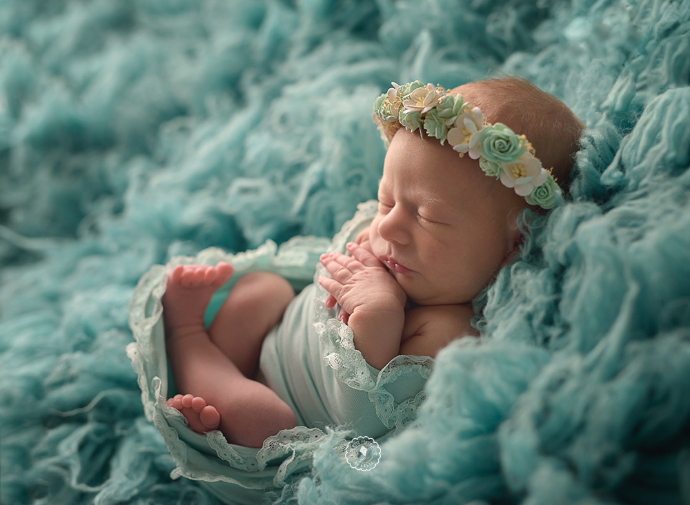 Parkland newborn session