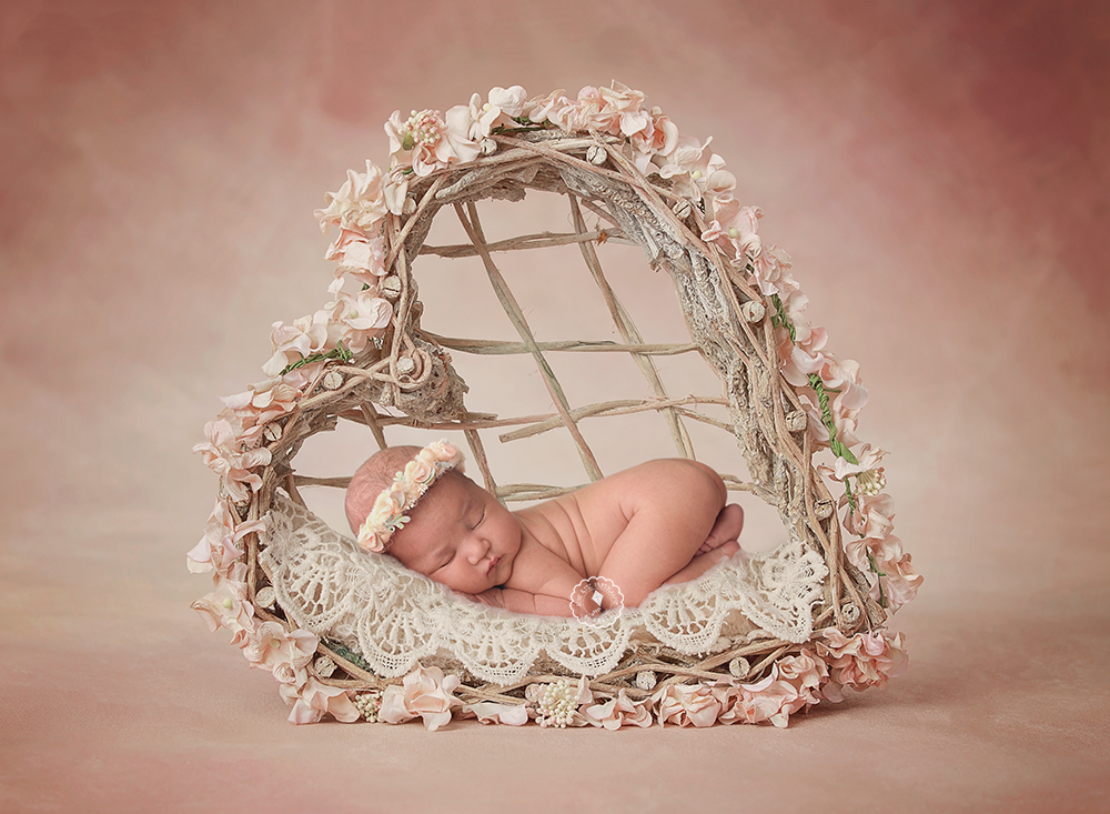 heartbed--Boynton-newborn-photographer.png