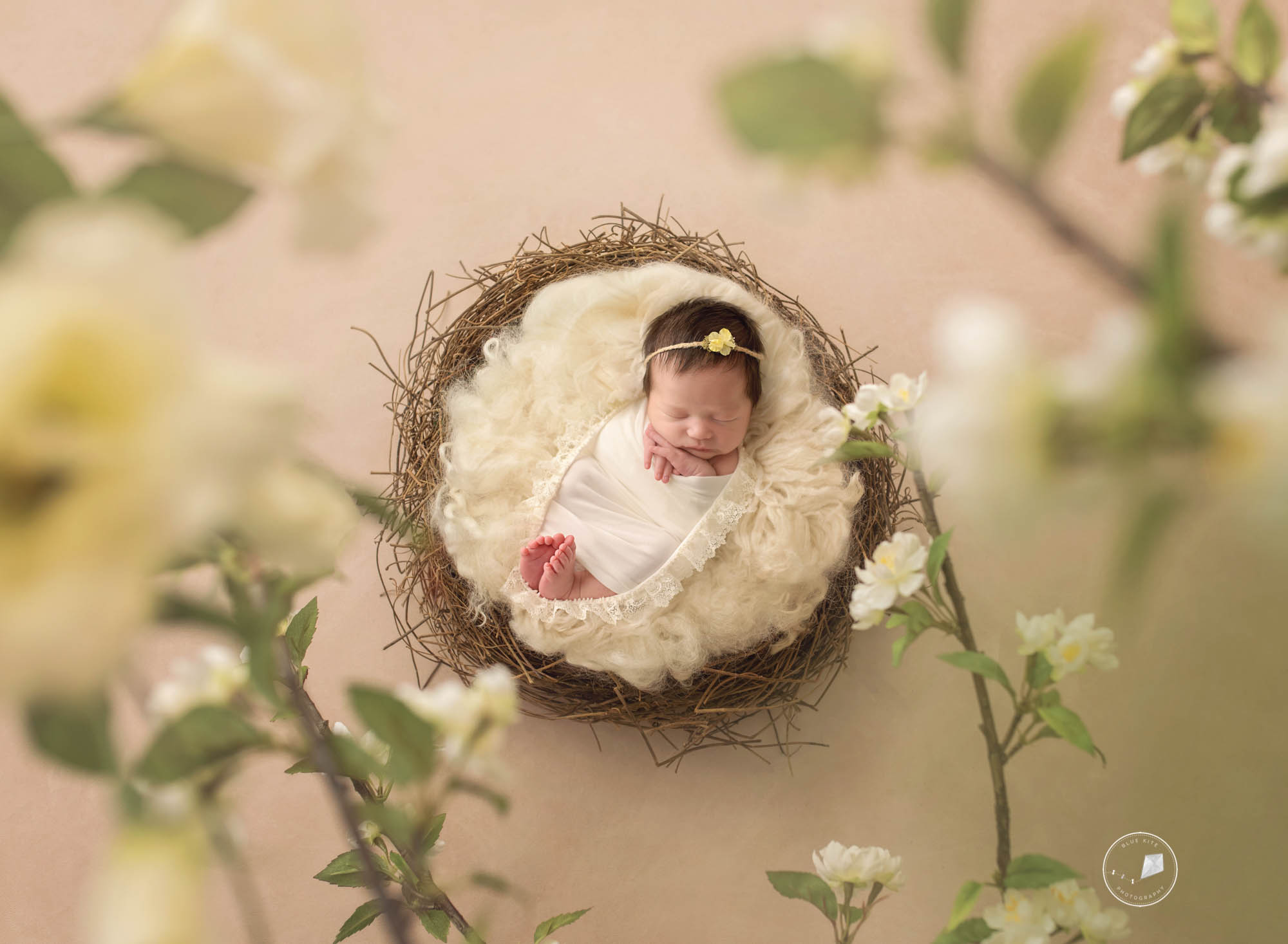 Boca Raton newborn photographer-.jpg