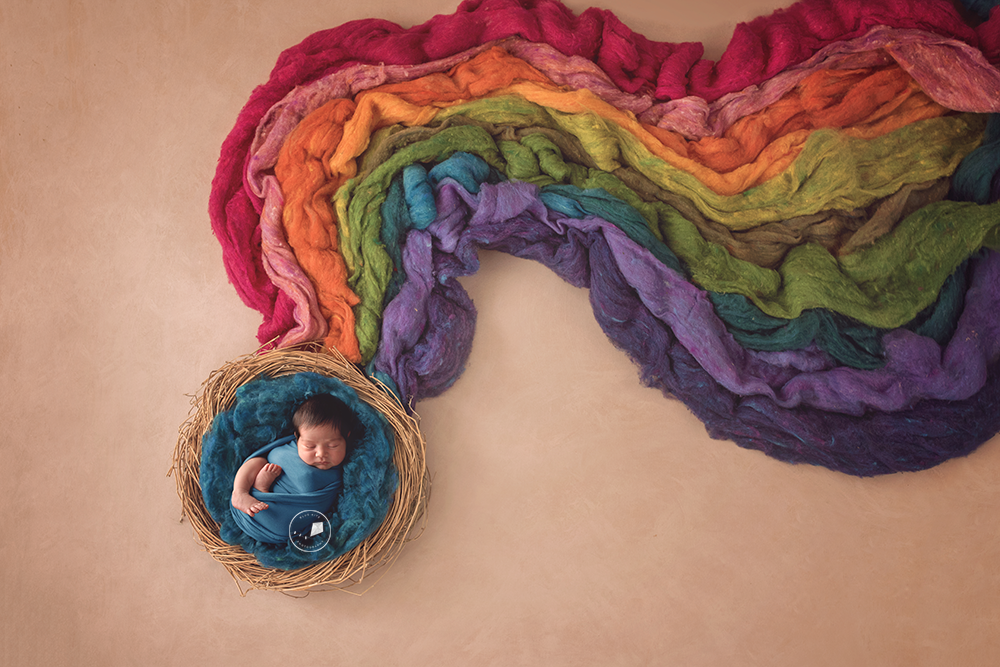 Parkland-newborn-photographer-Rainbow-Edit.png