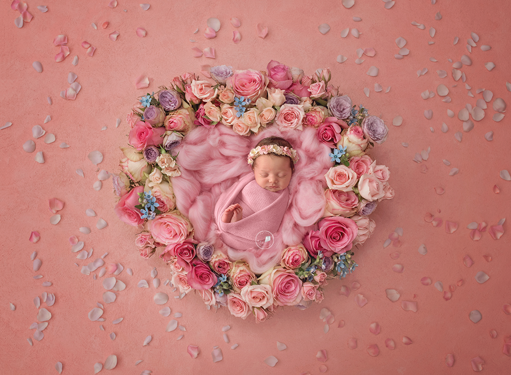 Coral-Springs-newborn-photographer-petalsheart.png