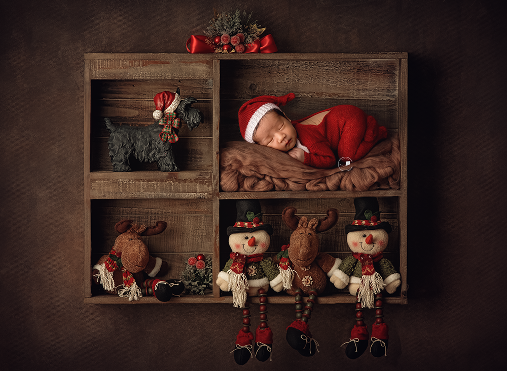Boca-Raton-newborn-photographer-elf-on-the-shelf-christmas.png