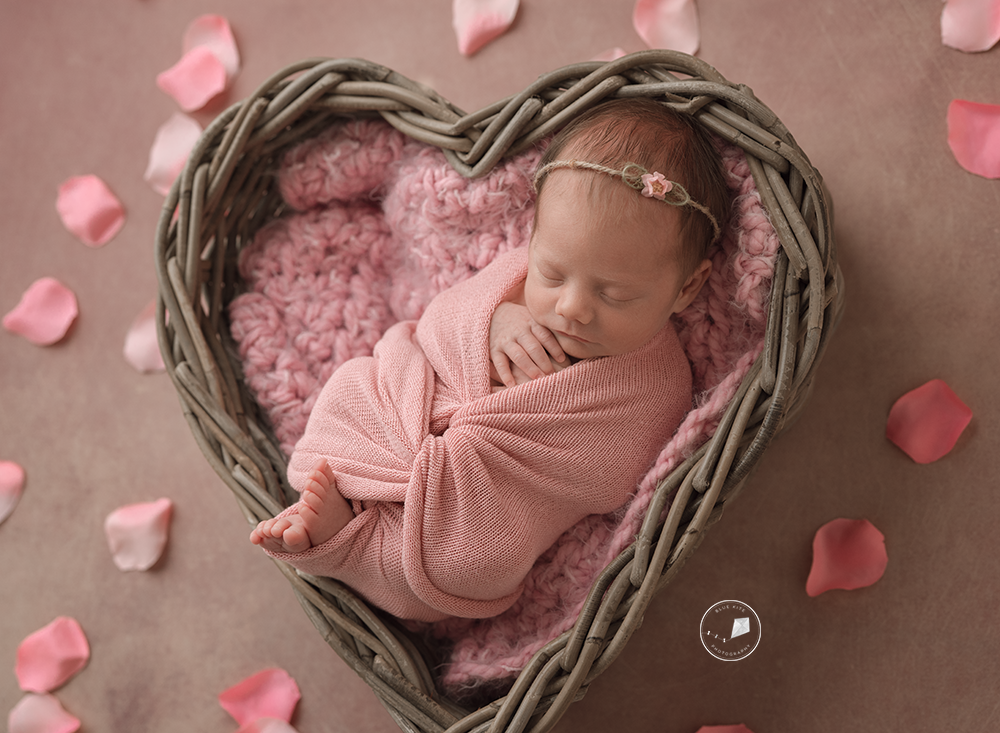 best newborn photographer in Coral Springs