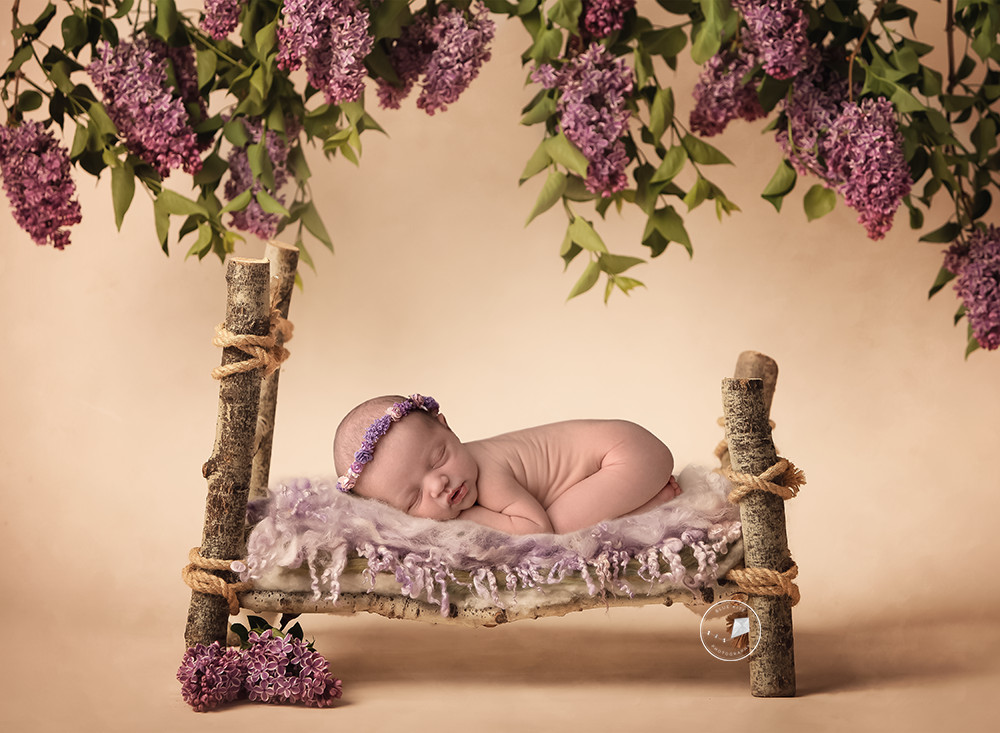 Parkland-newborn-photographer-lilac-twig-bed.png