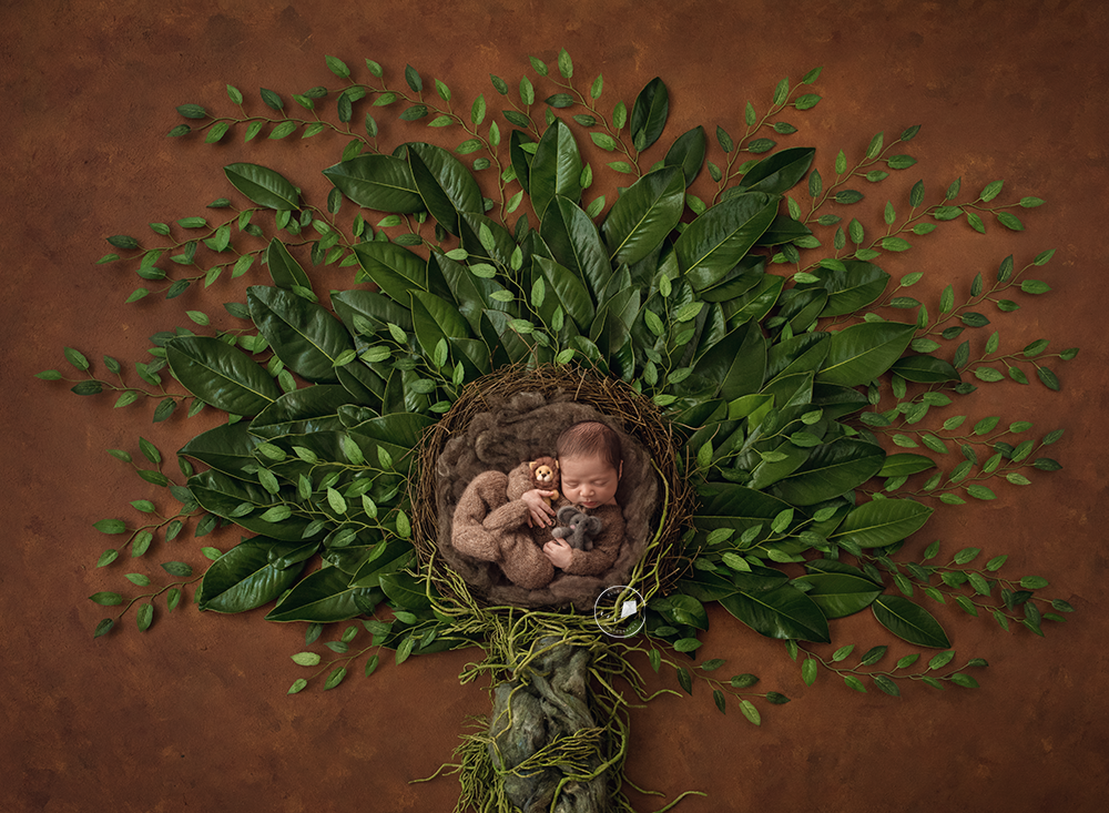 Parkland-newborn-photographer-safari-tree-Edit.png