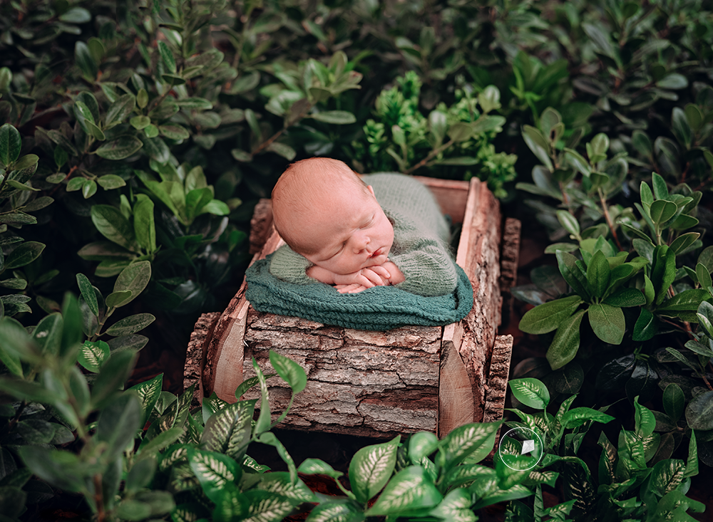 Outdorr-newborn-session-Parkland_DSC6317-Editfinal-Edit-Edit.png