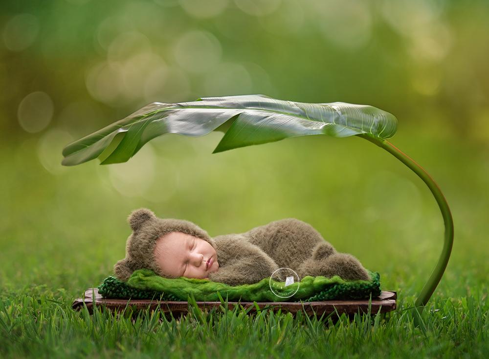outdoor-newborn-photo.png