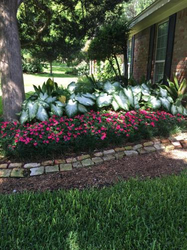 landscaping service waco texas.jpg