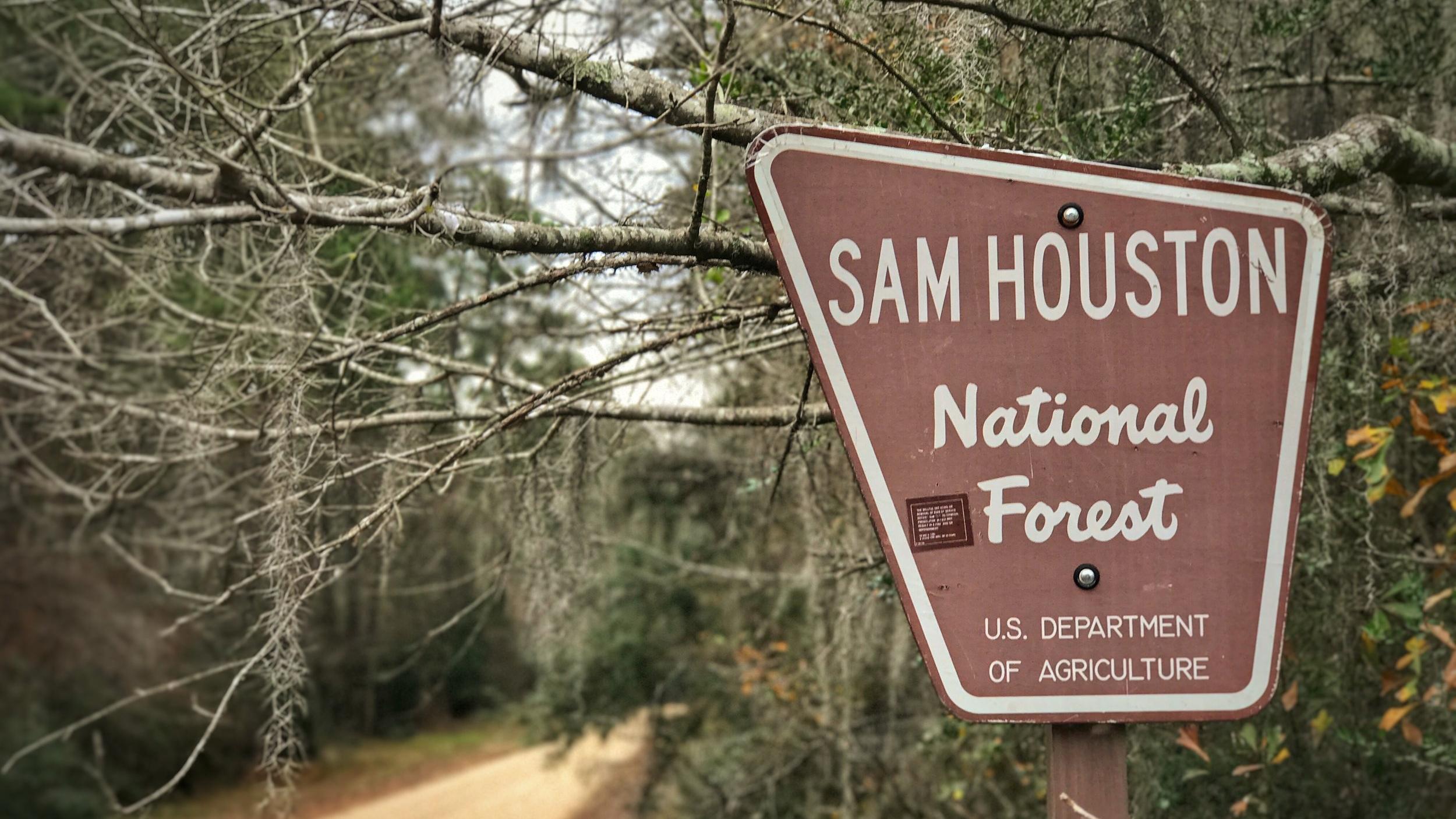 sam_houston_national_forest_sign.jpg