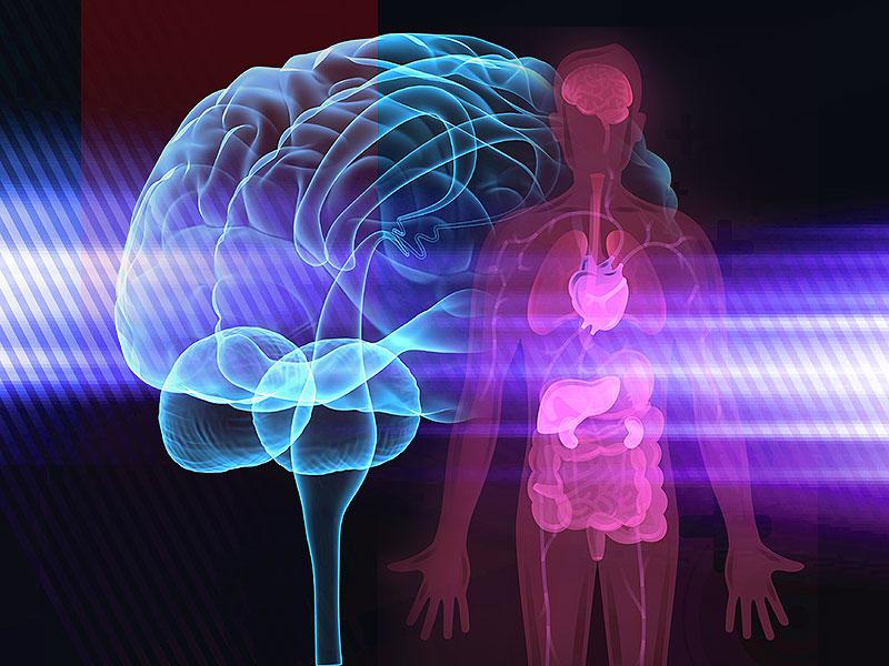 mind-body-connection.jpg