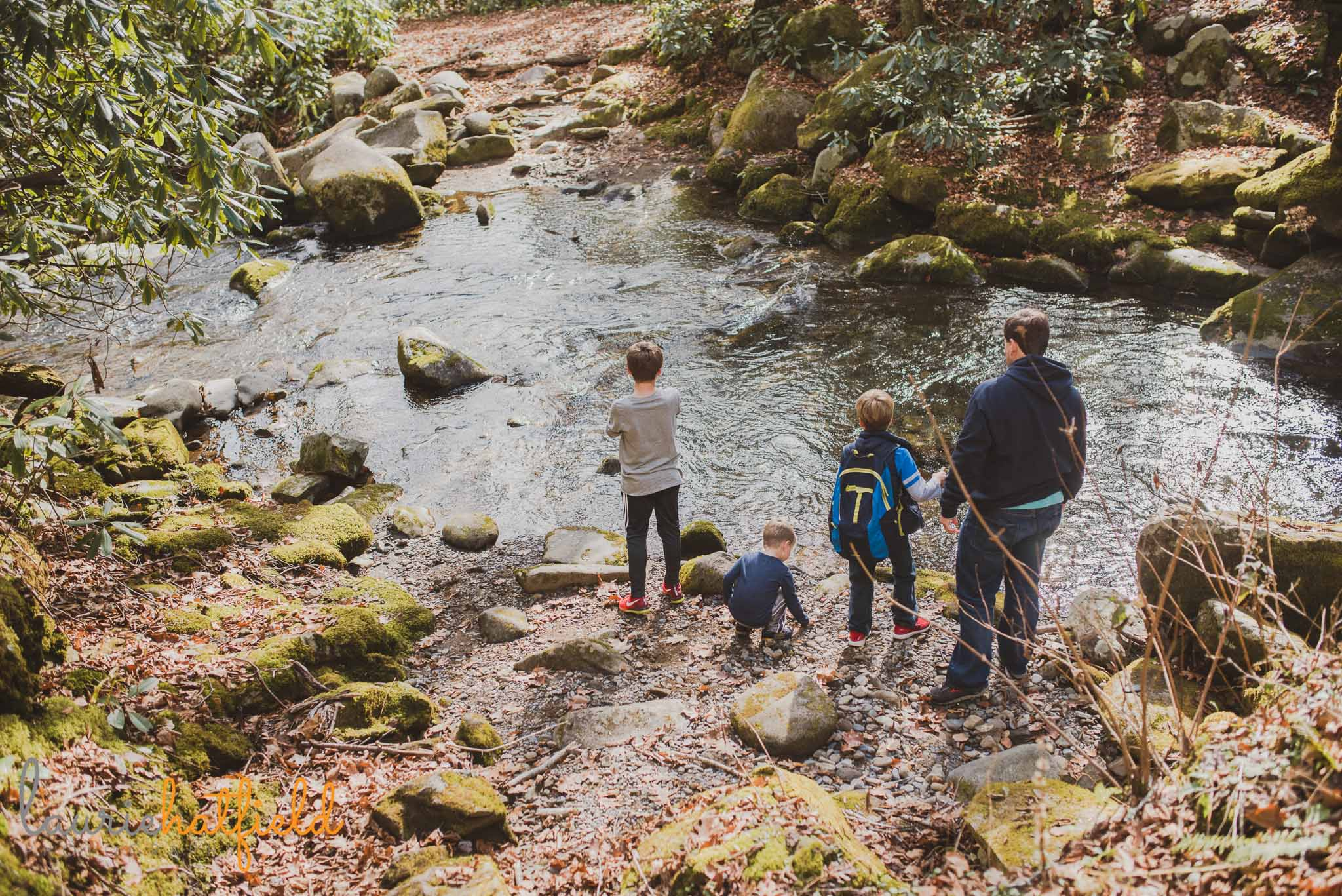 dad and sons playing at creek | Mobile AL family photographer