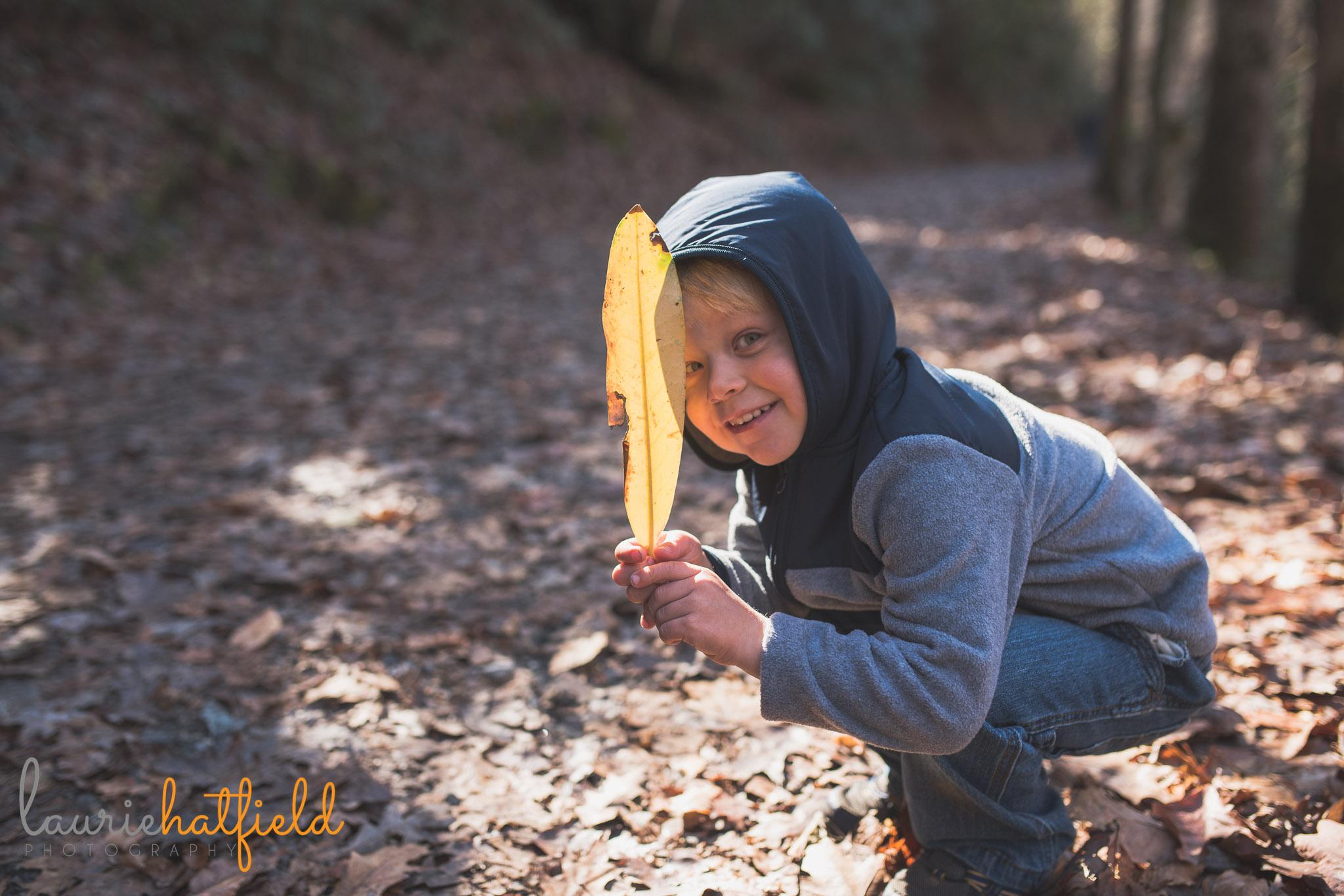 little boy holding big leaf | Mobile AL family photographer