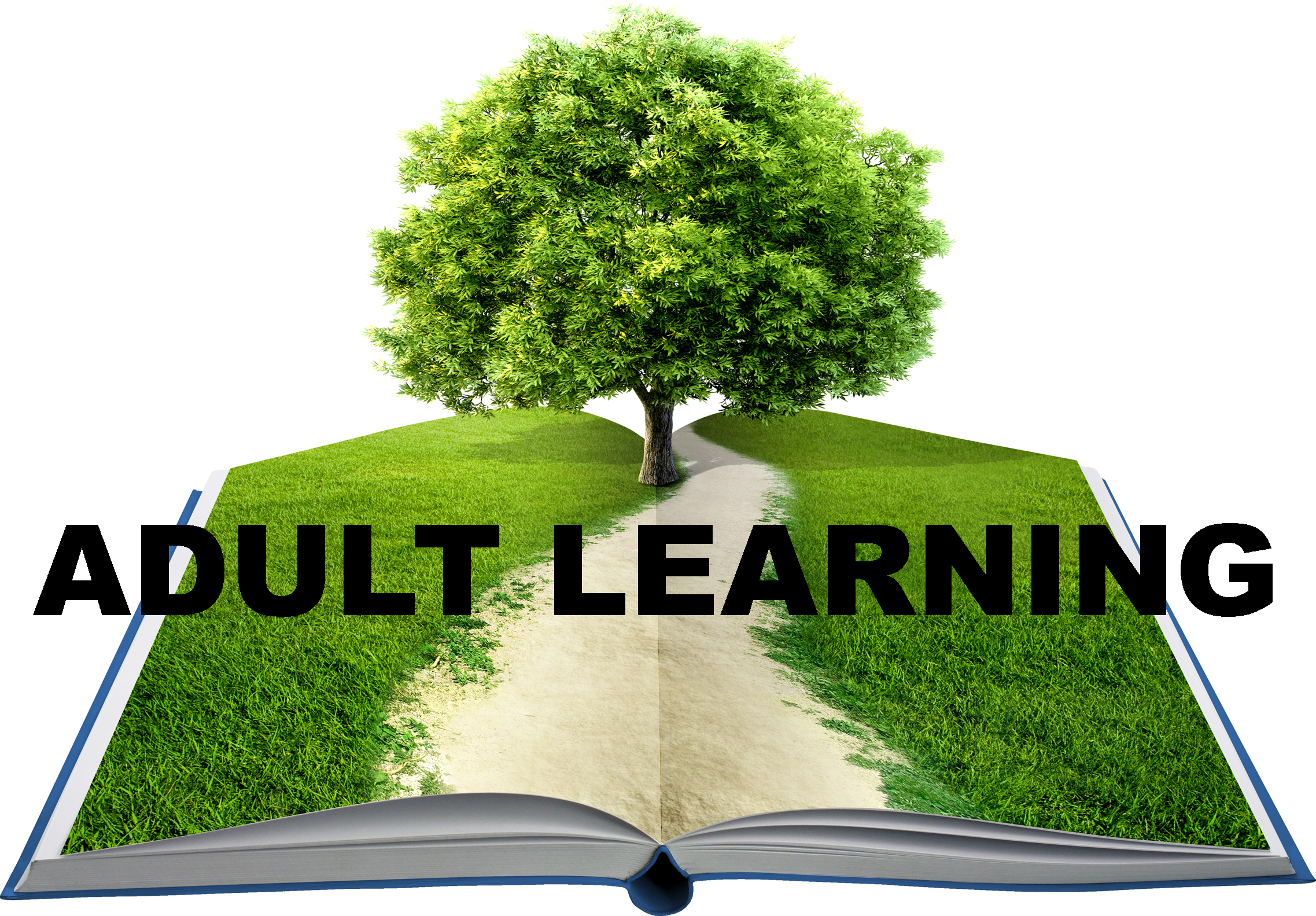 AdultLearning_OnlineImage_Transparent_Reduced.png