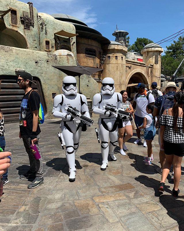 New hobby - calling stormtroopers pigs and watching them have zero clue how to react.