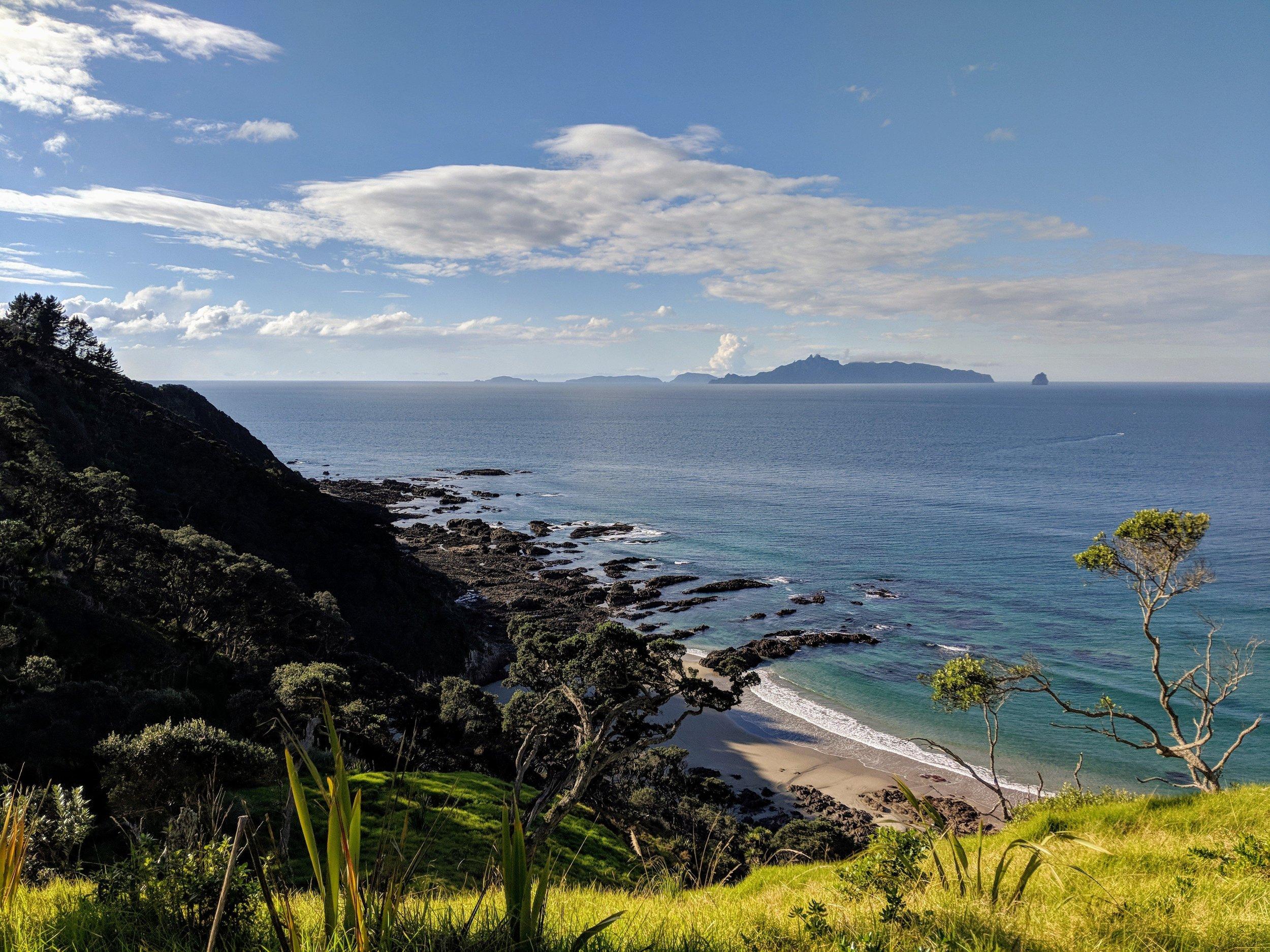 mangawhai-cliff-walk-northland-new-zealand-oc-4032x3024.jpg
