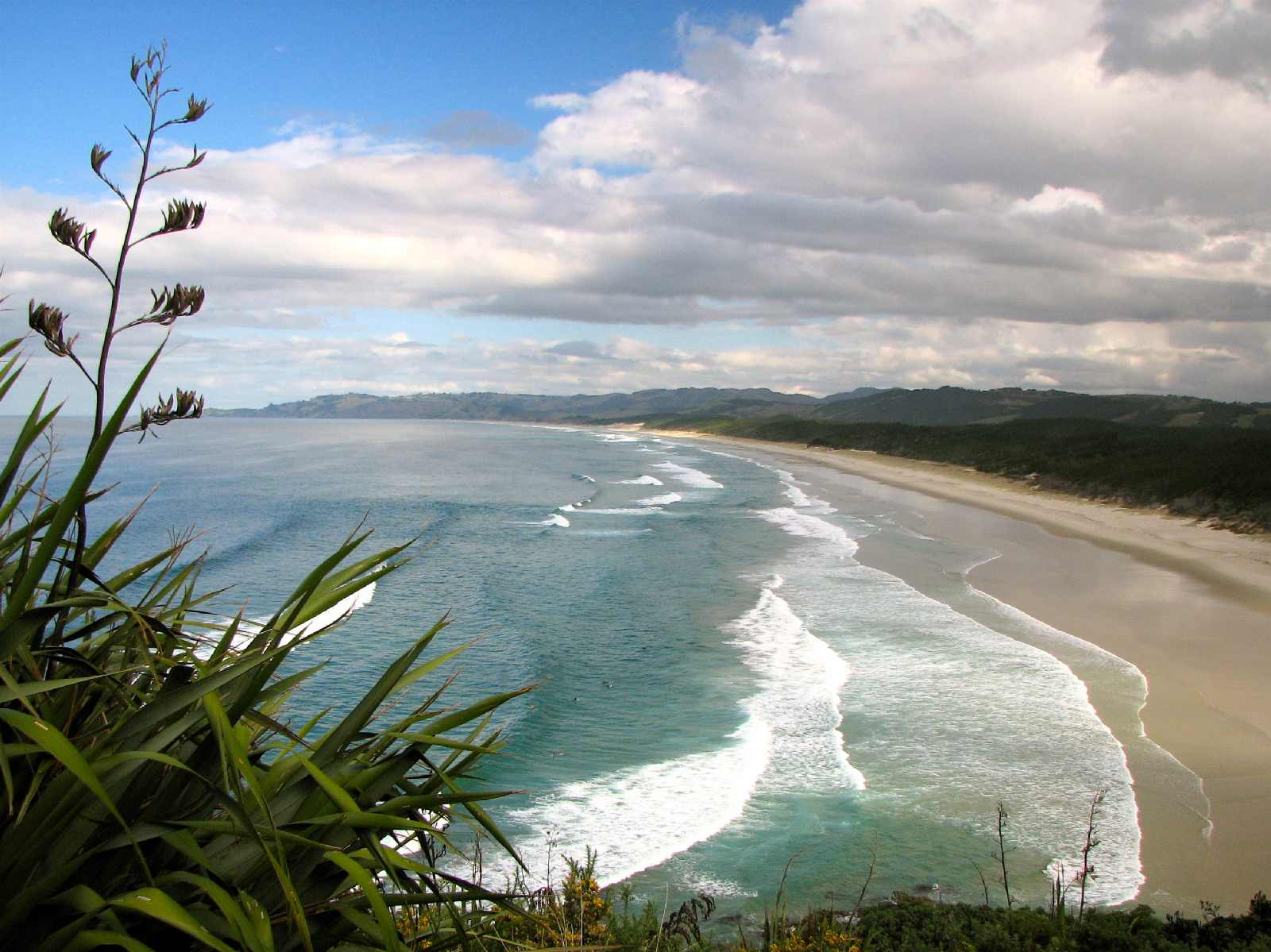 looking-south-along-the-beach-from-te-arai-point.jpg