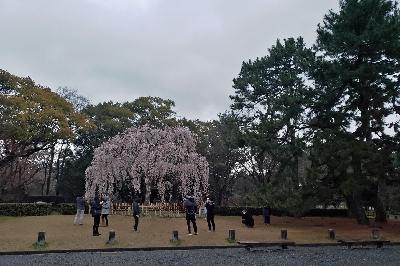 49-Japan.jpg
