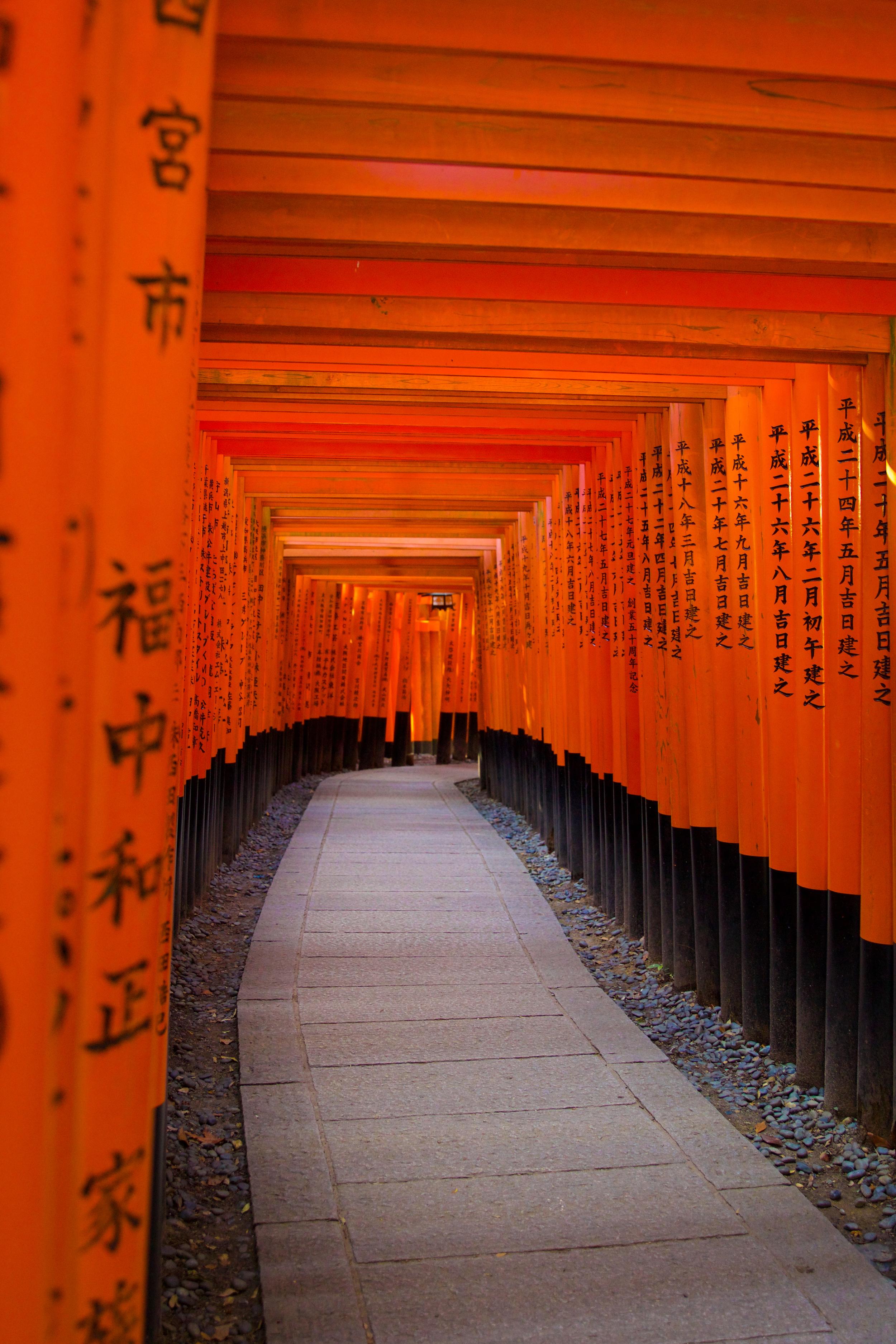 JAPANFINAL-284.jpg