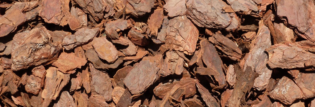 Pine Bark Chips are the best choice for top dressing pots, they are more expensive but much better looking than cheaper bark and wood chips.