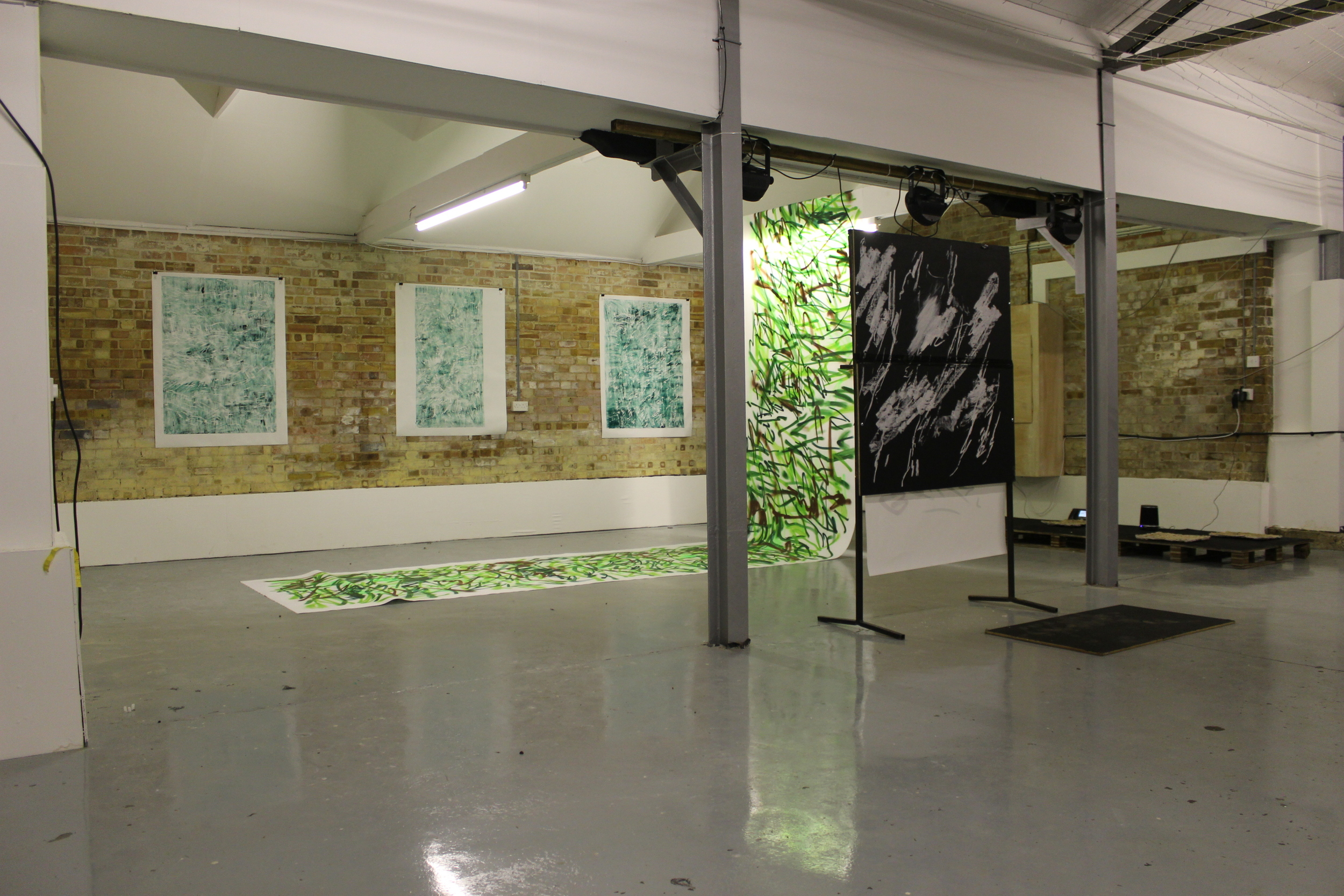 Swans on Heroin (Installation view)