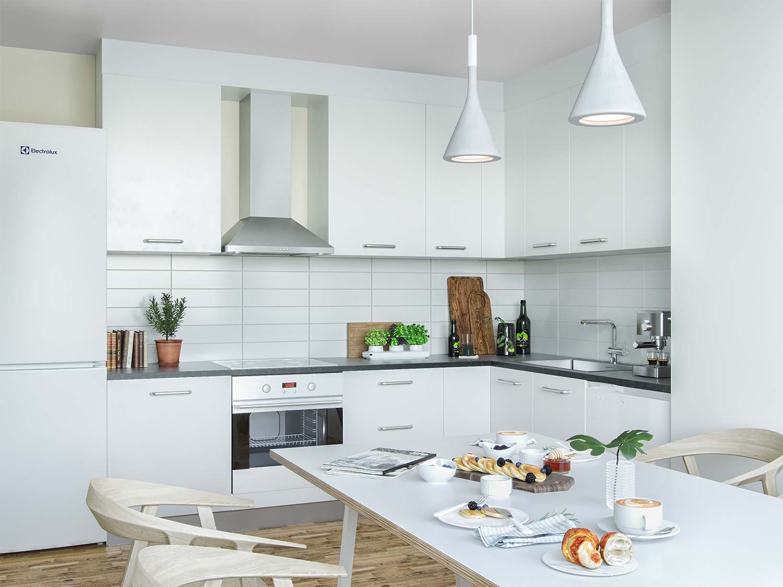 2 Rok Kitchen_Webb.jpg